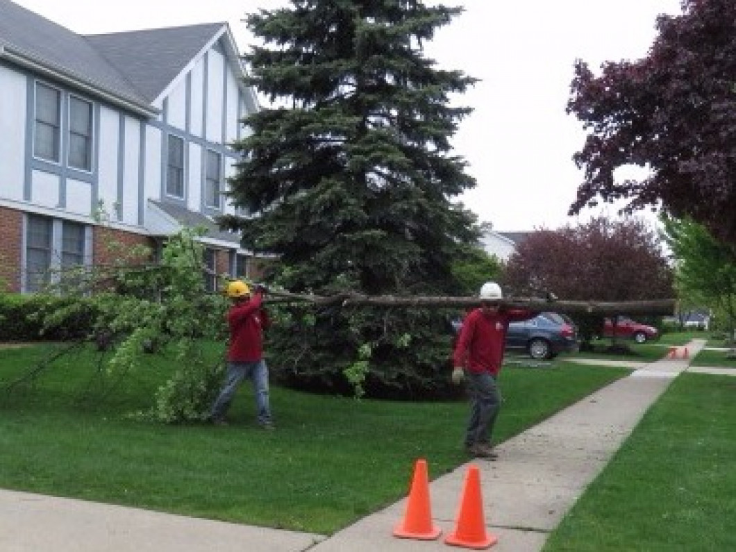 Let Your Shrubbery Make a Great First Impression in Waukegan, Lake Forest, Lincolnshire, Libertyville & Highland Park, IL